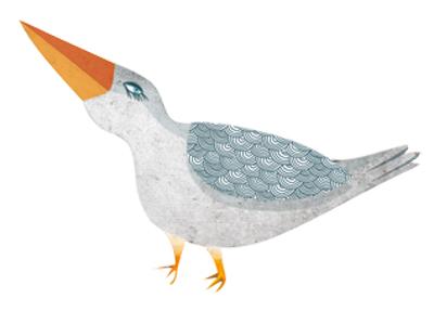 forest bird 1