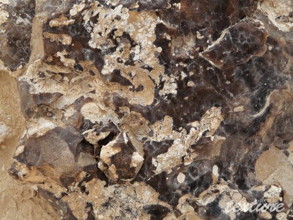 rocher noire_0