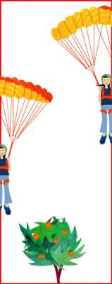 parashute-sur-oranger-2