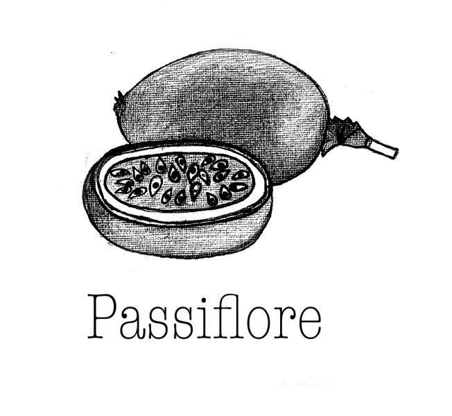 passiflora papie 2r