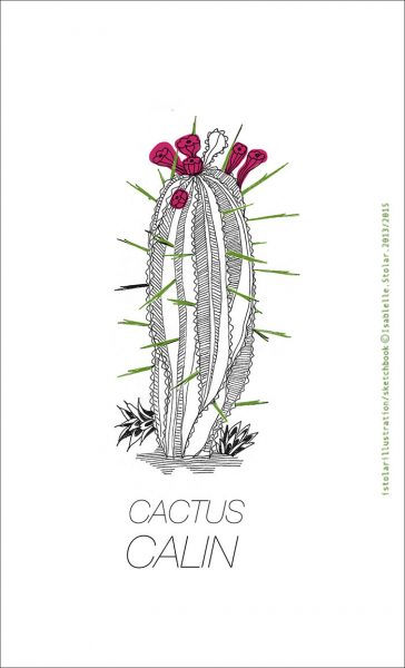 cactus calin copy