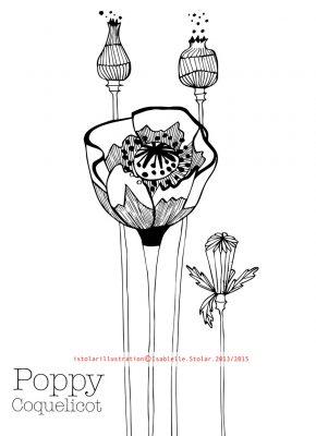 coloriage botanique 5 75