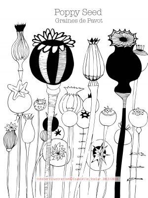 coloriage botanique 6 75