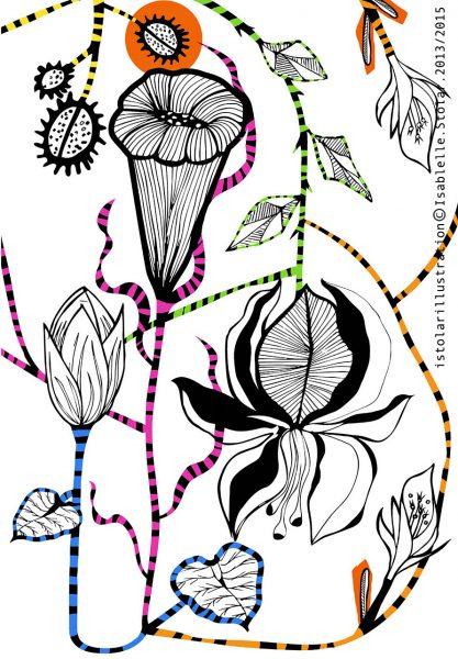 fleur tropic base couleurs M