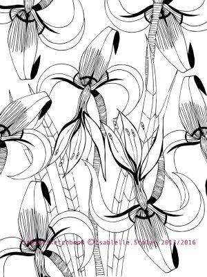 iris tapisserie blanche