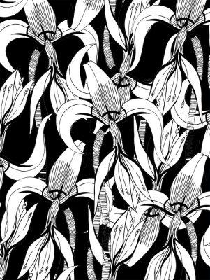 iris noir 15