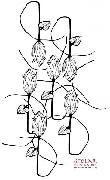 tulipe basepsd